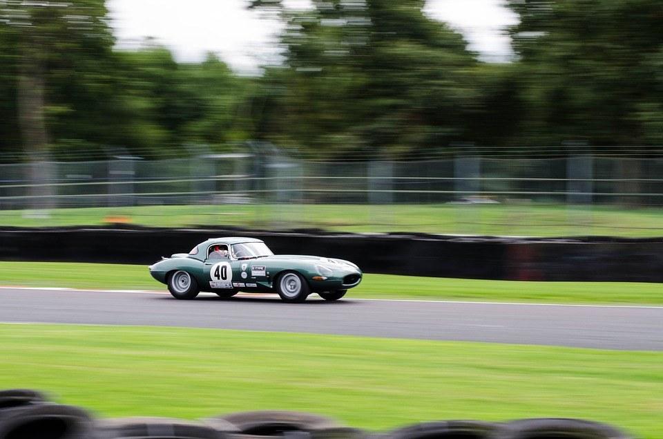 Jaguarrace